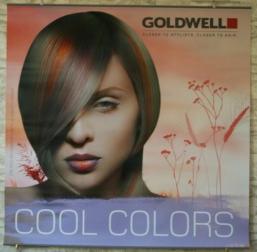 Goldwell Herbstdeko 2013 Poster-Set