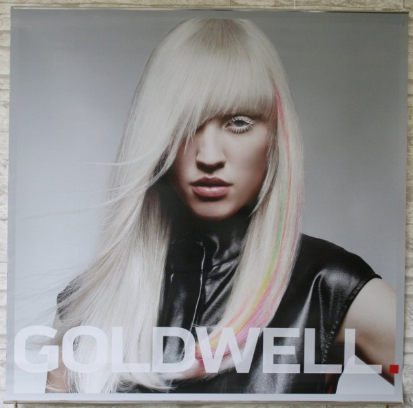 Goldwell Colorzoom 16 Poster Set