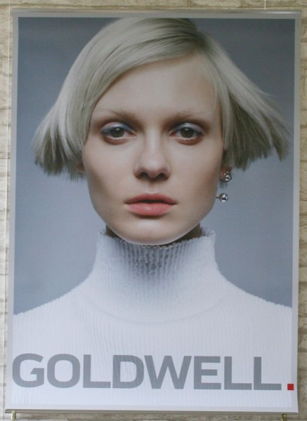 Goldwell Poster Cool Blonde 2016 Multi