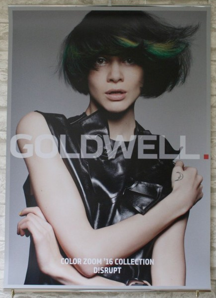 Goldwell Color Zoom 2016 Poster Set, 3 Stück
