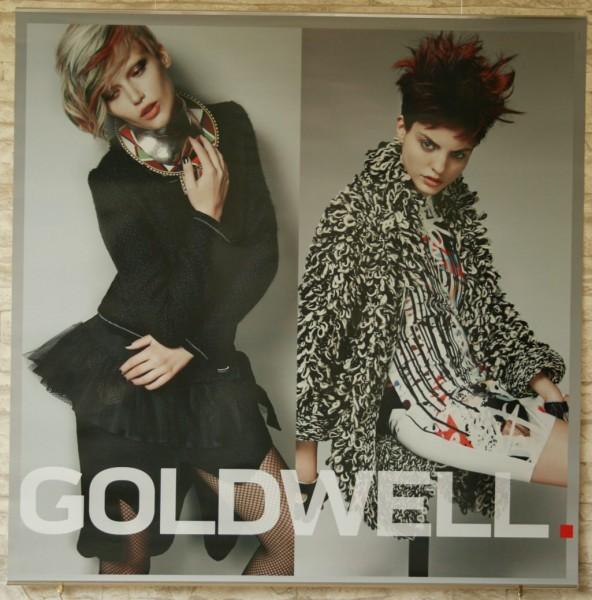 Goldwell Color Zoom 2015 Jahresdeko
