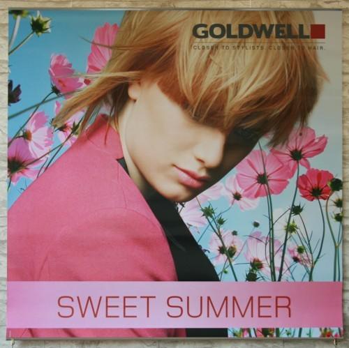Goldwell Sommerdeko 13 Poster Set