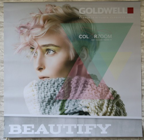 Goldwell Color Zoom 13 Poster Set