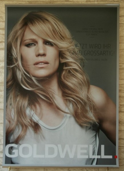 Goldwell New Grey PosterSet 2 FEM