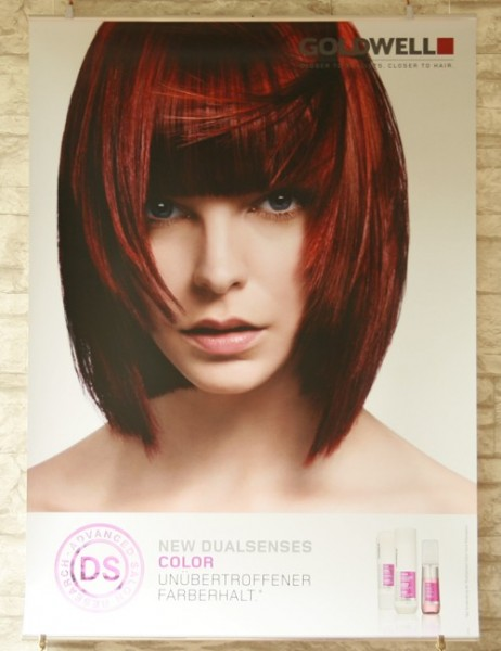 Goldwell Dualsenses Color Poster Set, 3 Stück