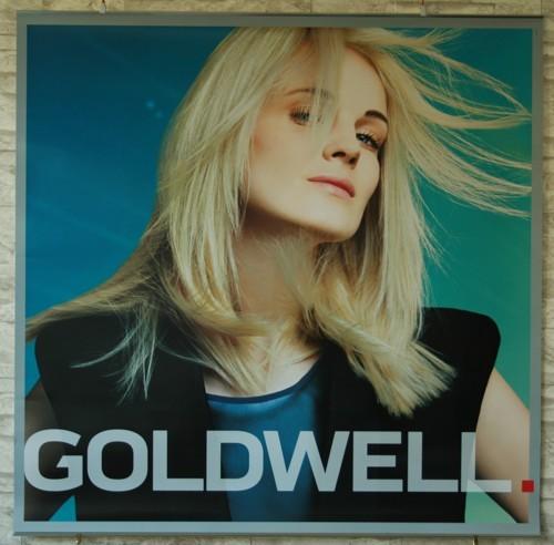 Goldwell Sommerdeko 15 Poster Set