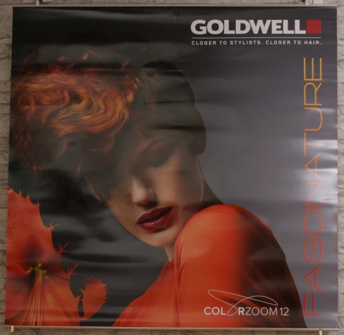 Goldwell Jahresdeko colorzoom 12 Poster Set