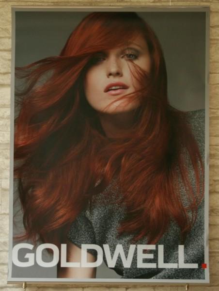 Goldwell Elumen Poster rot 15