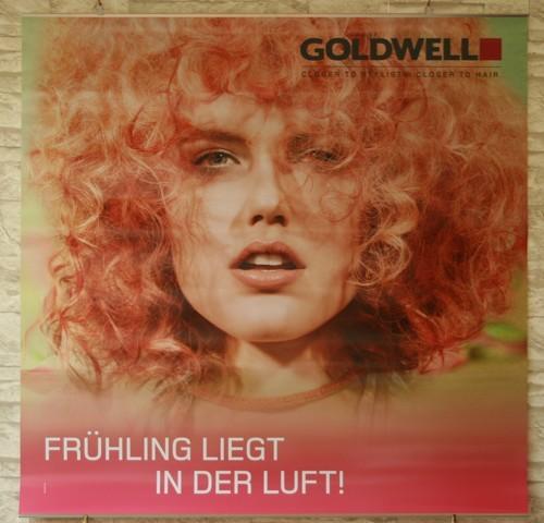 Goldwell Frühlingsdeko 2013 Poster Set