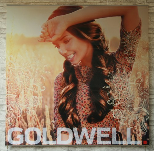 Goldwell Herbst Poster Set 2014